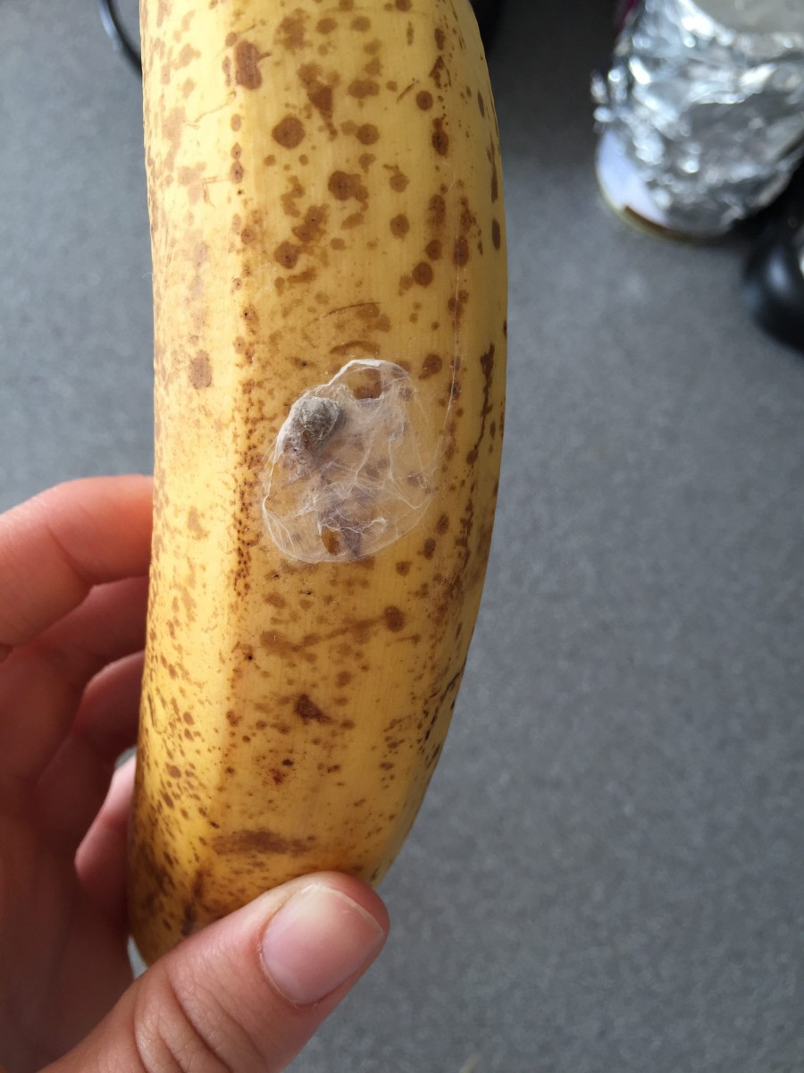 Mum left terrified after finding THIS on a banana. Can you guess what it is?