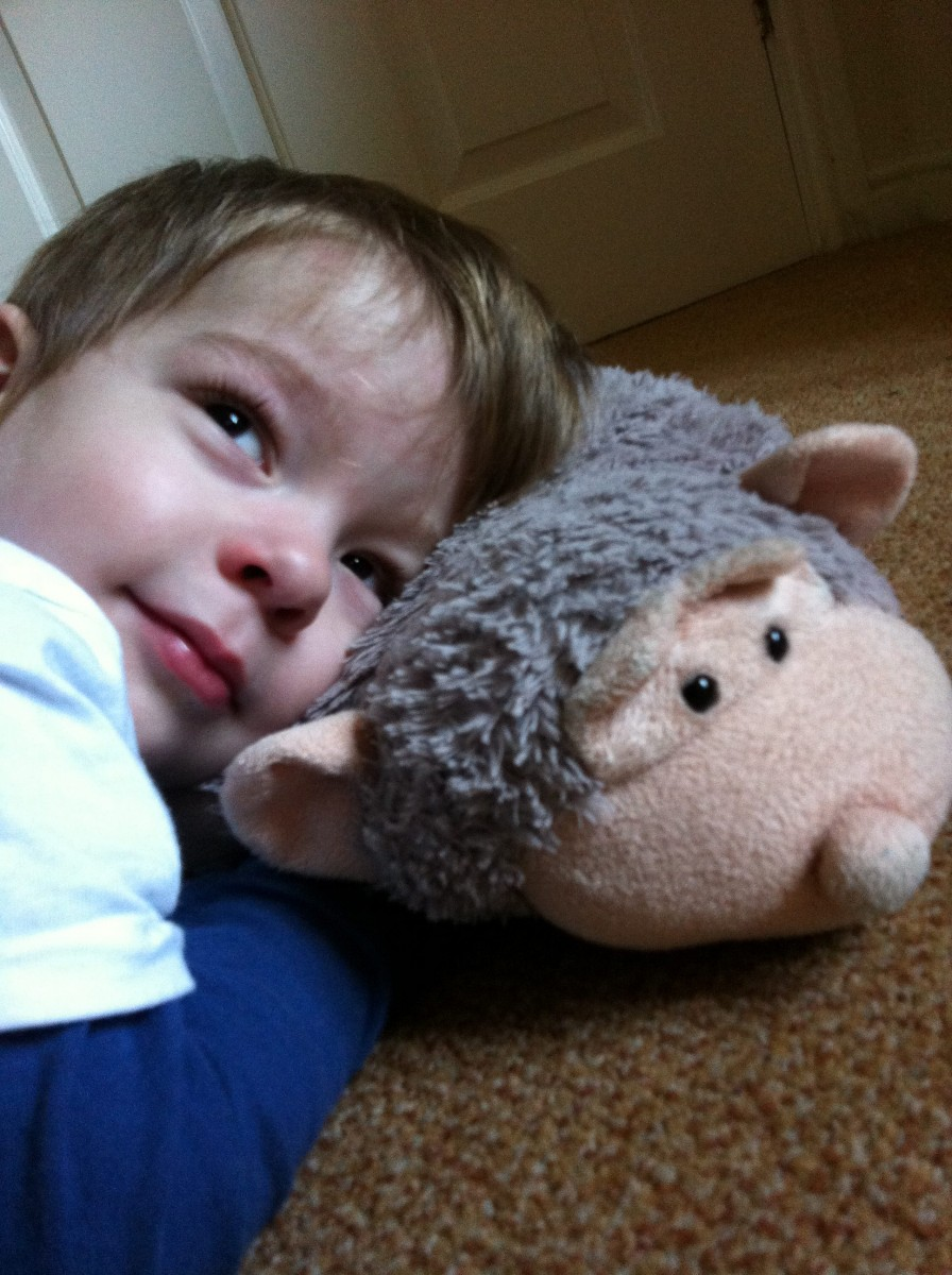 The tale of Oscar and his best friend 'Monkey Pillow' that's guaranteed to melt your heart