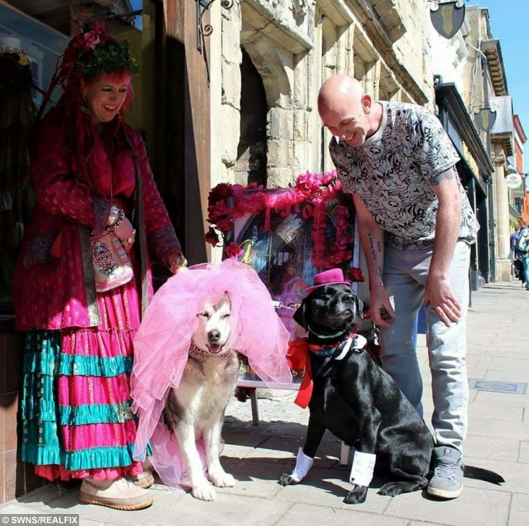 Pampered pooches Pagan and Anoushka on their wedding day with owners Pink Ali and John Awen. See SWNS story SWDOG: Two rescue pets have been joined in mutt-rimony with the world's first pagan wedding - for DOGS. Dog-lover John Awen met partner Pink Ali, both 45, and they instantly clicked - but worried their dogs wouldn't get on. However John's black Labrador, named Pagan, and Pink's Alaskan malamute called Anoushka fell in love at first sniff, and soon became inseparable. They bounded down the aisle in a 'paw fasting' ceremony - based on the Pagan tradition of hand fasting where a couple declare a binding union for each other.