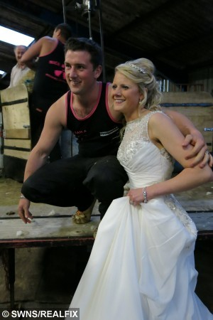 Samantha Bealey married sheep shearer Nick Harding. See SWNS story SWSHEAR; MOST weddings are attended by the bride and groom's nearest and dearest. But one North Devon couple decided their special day would be incomplete without horses, dogs and their own sheep shearing competition. Equine lecturer Samantha Bealey married sheep shearer Nick Harding at Torrington Methodist Church on May 2. Before tying the knot in front of friends and family, Samantha was escorted down the aisle by Nick's sheep dog Ruby.