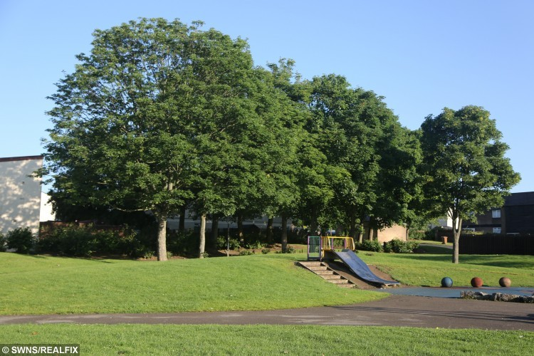The park near the home of Alfi, 6, from Washington near Sunderland where he had a block of soap put in his mouth by 23 year old Rian Birtwell. Birtwell, who was found guilty of battery at Sunderland crown court, claims Alfi was swearing at him after he stopped him from kicking an old man's walking stick. See SWNS story SWSOAP; A man washed a child's mouth out with soap after the youngster told him to 'fuck off' and tried to kick an old man's walking stick, a court heard. Angry Ryan Birtwell, 23 spotted the six-year-old's behaviour in a park near his home and confronted him. Ryan had seen the boy kick an old man's cane and told him to stop - but the youth told him to 'fuck off' and called him a 'gay boy', a court heard. Ryan then walked into a nearby shop and bought a three pack of soap and pinned the boy down and stuck a bar in his mouth.