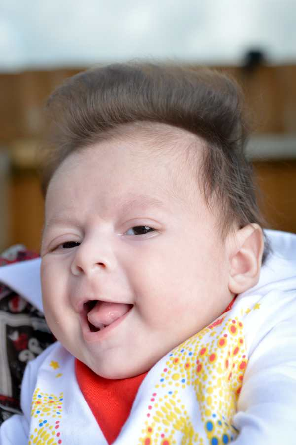 George Georgious. George is 10 weeks old and has a quiff just like Elvis. Palmers Green London