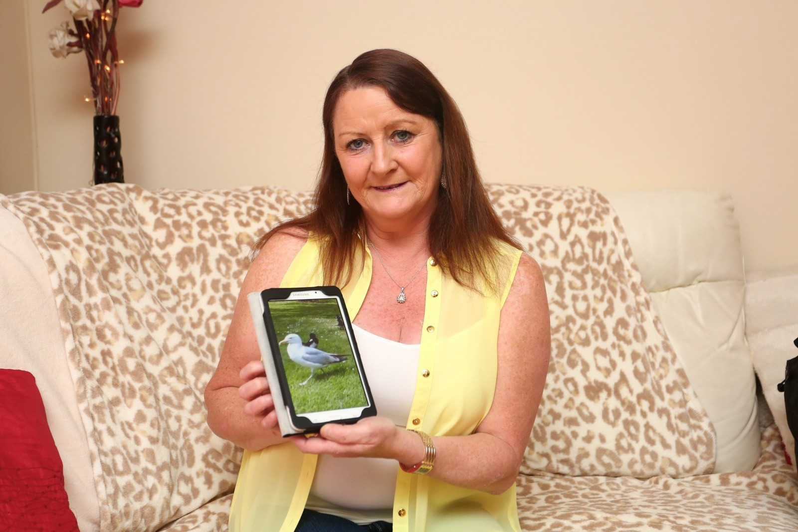 This grandmother was SHOCKED after her mobile phone was stolen by a SEAGULL