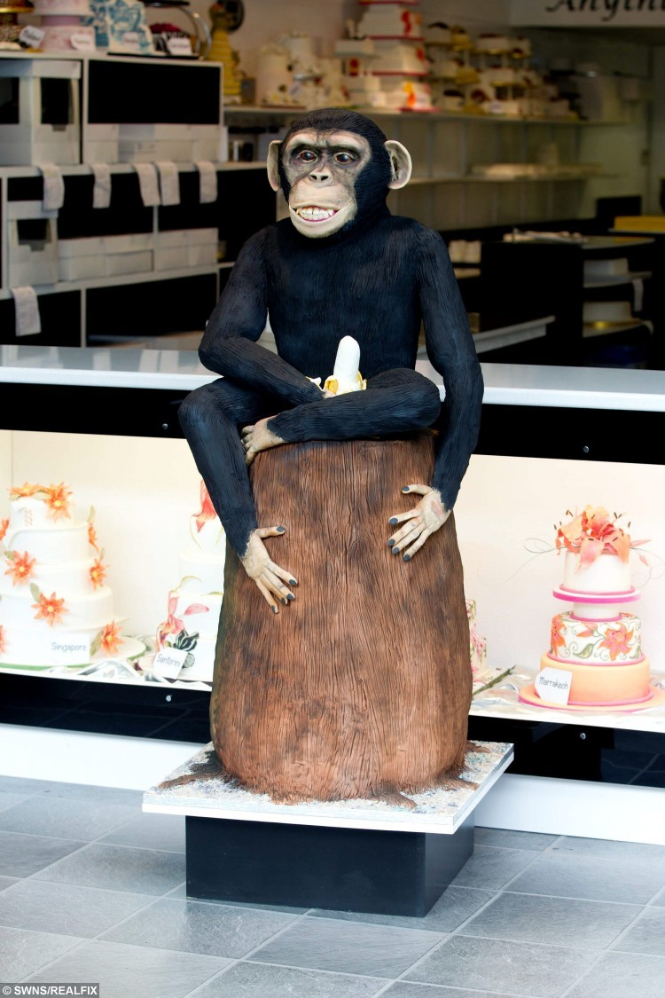 Cake Shop Solihull
