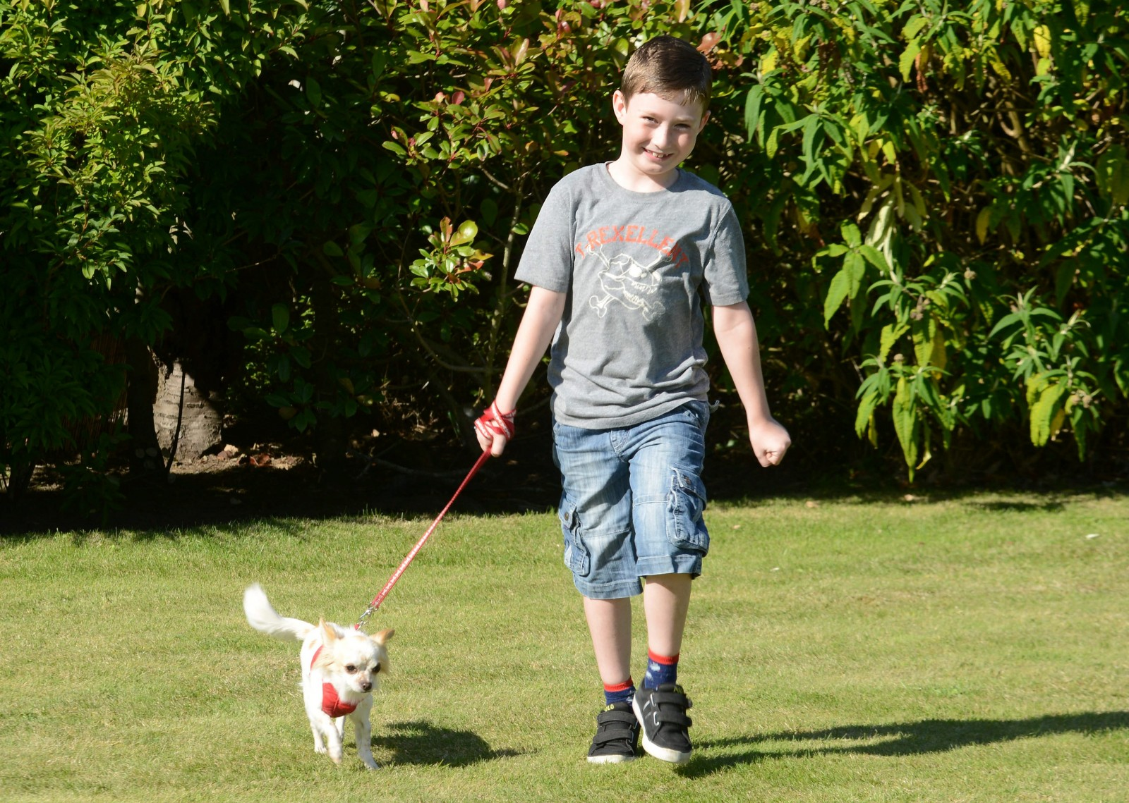 Within weeks of becoming best friends this disabled boy and his lame puppy both started to WALK