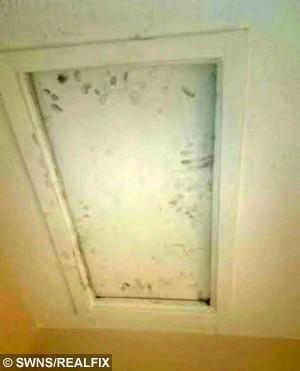 The grubby fingerprints left by the loft hatch