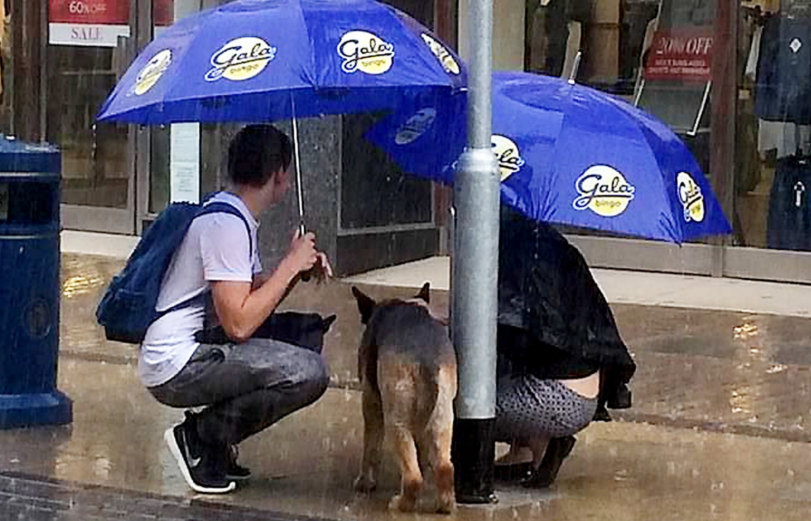 The heartwarming moment strangers protect a dog from torrential rain