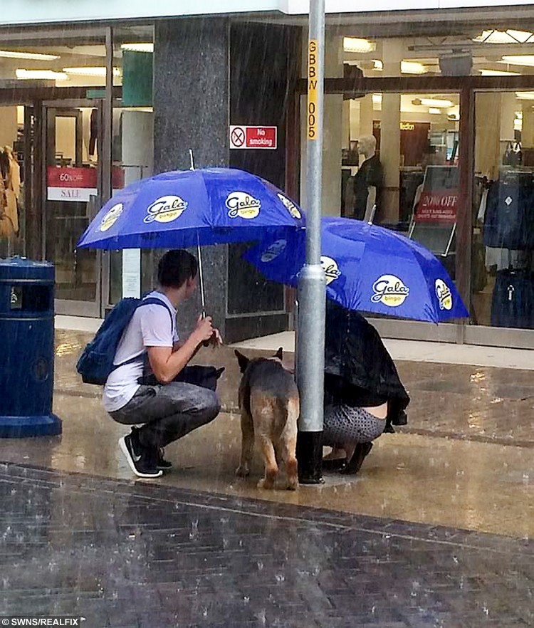 This mystery couple got absolutely soaked to the skin when they stopped to protect a strangerÃs dog that was tied up à in the RAIN. See SWNS story SWPROTECT; The young man even took off his jacket to shelter the shivering Alsatian as it was tied to a lamp post while its uncaring owner shopped in a Marks and Spencer. The heart-warming scene was captured on camera by local bingo worker Jon Sparkes, who handed the mystery pair a couple of umbrellas to better shelter themselves and their grateful four-legged friend. After around 20 minutes, the dogÃs owner left the high-end store in Dover, Kent, and untied her dog from the lamppost and left.