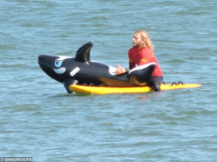 A lifeguard at Sandsend, Whitby struggles with a rescue - of an inflatable Killer Whale. See SWNS story SWWHALE; A lifeguard was called into action on Tuesday to rescue an unusual victim drifting out to sea - a large inflatable Killer Whale. A large gust of wind carried the Whale out into deeper water while beachgoers and its distressed owner, a young boy, looked on helplessly unable to retrieve the inflatable. The alert lifeguard who raced to reach the drifting float, struggled to deflate the huge Mammal and bring it under control. It took around 20 minutes for the lifeguard, battling wind and current, to bring the floating Whale under control and safely return it back to the beach at Sandsend, Whitby, North Yorkshire. The exhausted lifeguard was able to reunite the inflatable with the boy, who left with his parents to continue enjoying the hot day.