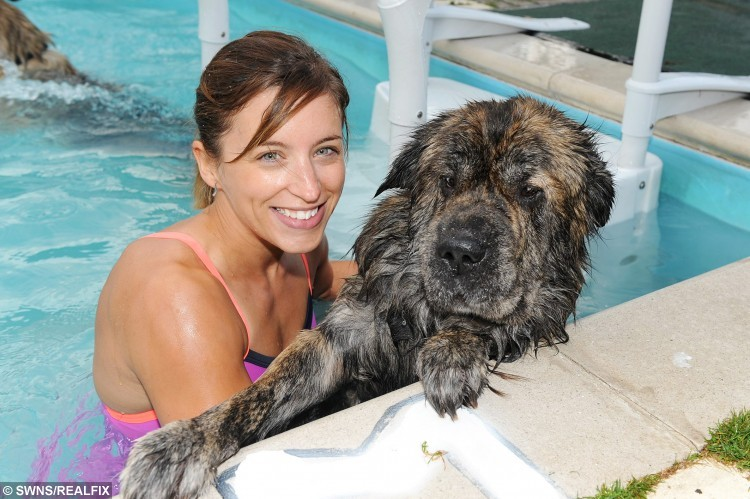 Dogs and owners swimming session at Heckington Swimming pool -  Lyndsay Dungworth of Lincoln, with her dog Harvey.  A village swimming pool has started offering animal-lovers the chance to take a dip - with their DOGS.  See NTI story NTISWIM.  Heckington Community Swimming Pool near Sleaford, Lincs., originally came up with the idea to allow pet owners to make a splash with their canine companions as a joke.  But after it proved a huge hit last month the facility has decided to hold their  'Doggy Dip' sessions three times a month. Since then up to 20 dogs and their owners have been turning up at each session to pay Ã5  a time to take their pooches for a doggy paddle.