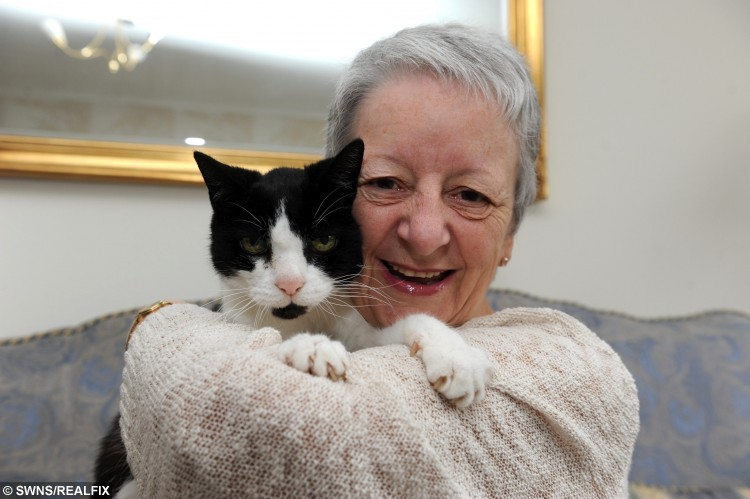 Sue McKenzie with her cat 24 year old Tom who started tapping Sue on her shoulder when she developed a lump which turned out to be cancer. See Ross Parry copy RPYCAT : A woman has praised her cat for saving her life - after it discovered she had CANCER. Sue McKenzie, 64, and her 24-year-old cat Tom have lived together for the past 20 years and Sue has gotten used to her pet's aloof manner. So, when Tom started tapping her on the back of the neck with his paw Sue thought something must be wrong - but with him instead of her. But after a vet told Sue there was nothing wrong with Tom and suggested he was trying to tell her something she decided to investigate - and found a lump in her neck which was eventually diagnosed as cancerous.