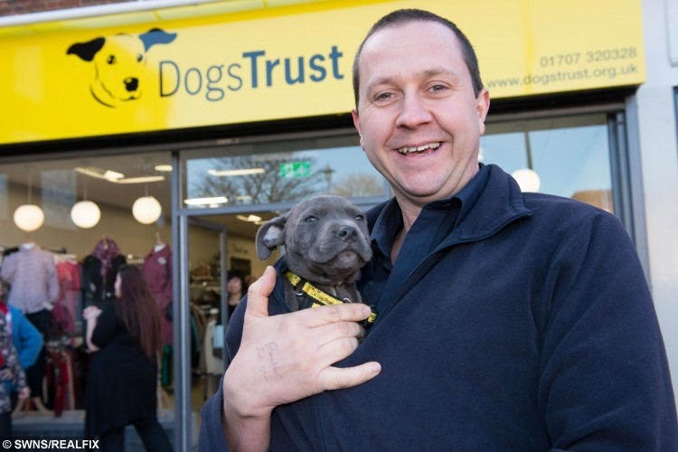 "Richard Moore, rehoming centre manager for Dogs Trust Harefield, Uxbridge. Pups at the Dogs Trust Harefield, Uxbridge, have been named after England Rugby team players ahead of the world cup. See Ross Parry copy RPYDOGS : An adorable litter for four-legged pups are hoping they have what it takes to score a perfect match and get rehomed with some rugby fans - having being named after members of the England rugby team. Determined to spur on the national team while ""try-ing"" to rehome the pups, staff at Dogs Trust have named a bouncy scrummage of six pups after their English heroes. The eleven week old puppies, including three Lurchers and three German Shepherds, are desperate to be part of a perfect squad. Staff have named the furry, four-legged line up: Doggy May, Sam Furgess, Chris Robpaw, James Haskennel, Joe Launchbury-a-bone and Panthony Watson and they have even been in training for a special pup-by game."