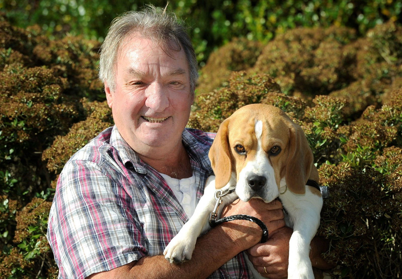 Pensioner reunited with his beloved pet after he was stolen during carjacking