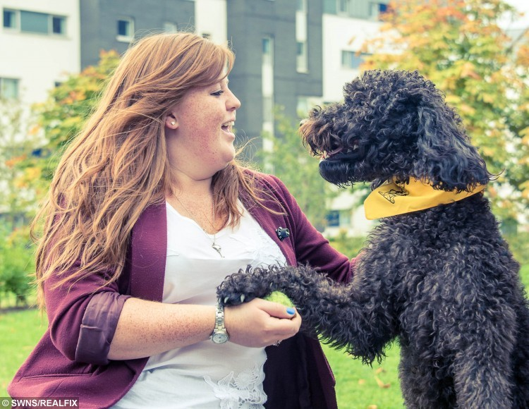 """Rocco the dog who is helping students at Queen Margaret University de-stress. See Centre Press story CPDOG; A dog has become the first animal in Scotland to be given a full-time job helping university students to cope with stress. Rocco, a two-year-old labradoodle, has been named the """"student stress-buster"""" given the official title of """"therapet"""" at Queen Margaret University in East Lothian. The pooch is part of Canine Concern Scotland Trust's Therapet Visiting Service and has been specially assessed by the charity for the role."""