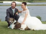 Groom spends thousands to bring stray dog back from Iraq to be his best man