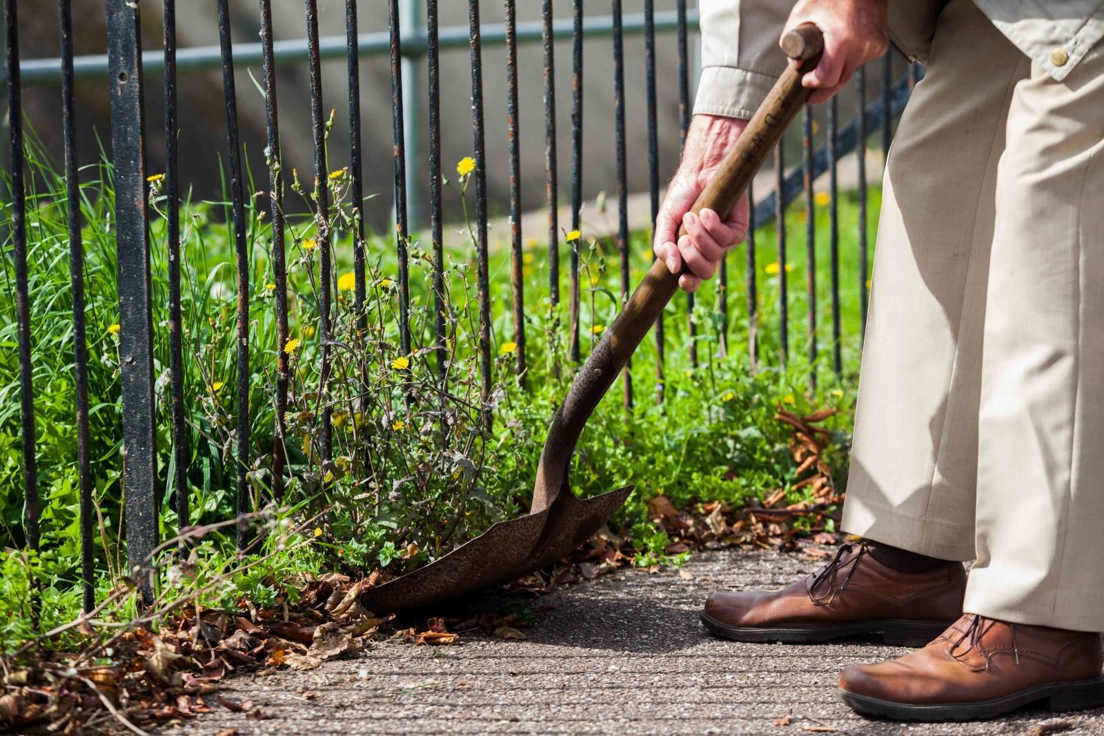 'Spaderman' finally reveals himself after spending years ridding hometown of pesky weeds