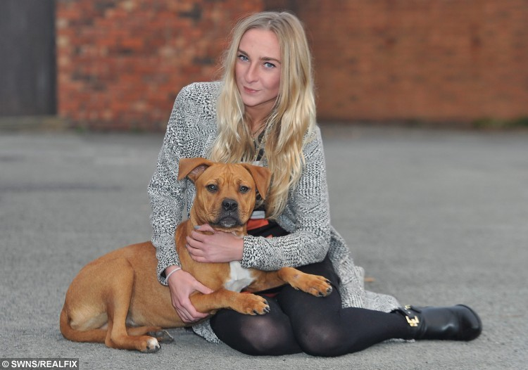 Scrunch the pup with her owner Maria Birtle from Leyland, Lancs., got her head stuck in a wall after chewing her way through a washing machine outlet pipe. See Ross Parry Copy RPYWALL : This is the moment a playful pooch had to be freed by firefighters after getting her head stuck in a WALL. Pup Scrunch managed to push her head through the bricks while chewing her way through a washing machine outlet pipe. Her owner Maria Birtle was stunned to come home and find her pooch trapped, and her house trashed.  19 October 2015.