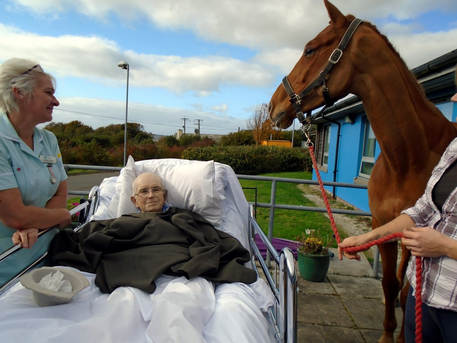 Moment caring nurses grant man's dying wish to say goodbye to his horse