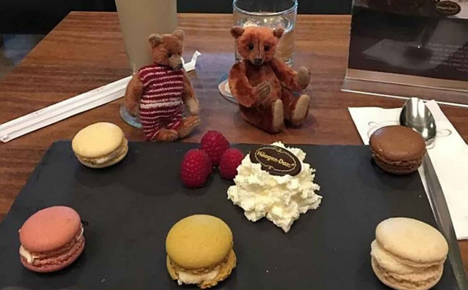 Lawyer heartbroken after losing two teddy bears while taking them out for dinner