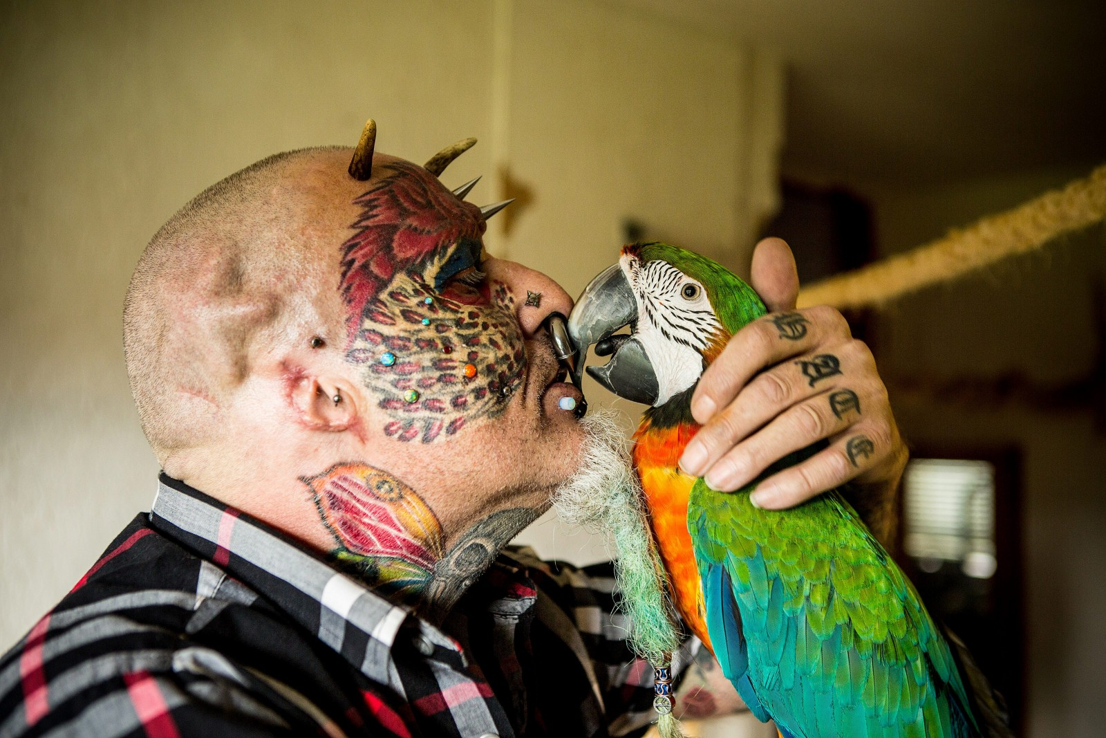 Man has his ears chopped off so he can look like his beloved pet PARROTS!
