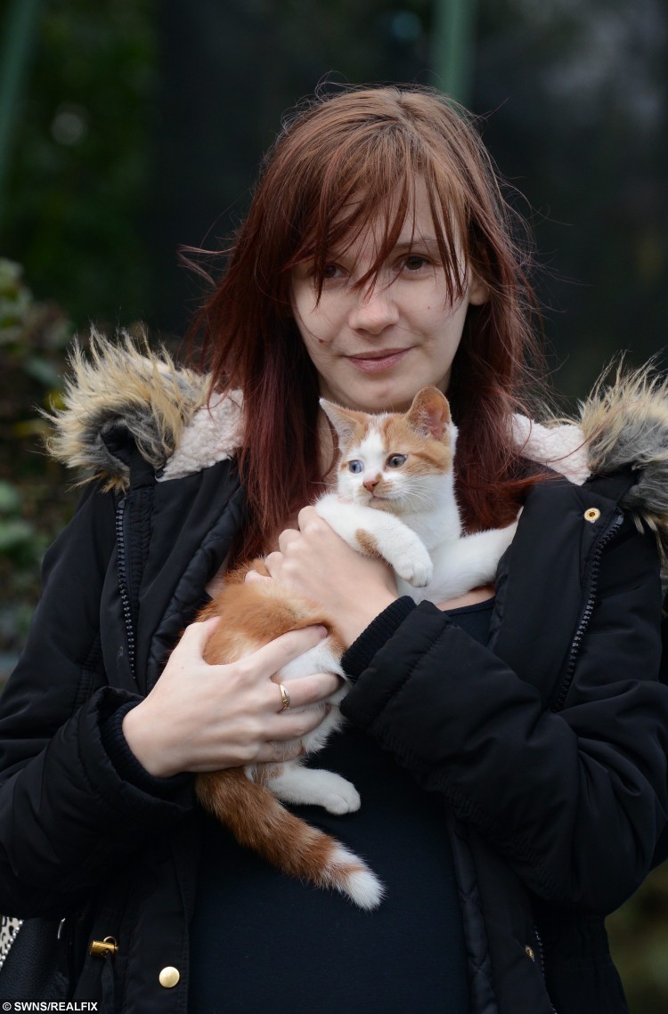 """Katie Ashton with her rescued kitten Kit Kat who were in the house at the time of the accident.  A couple had a lucky escape when a car careered off the road and ploughed into the back of their home and into their sitting room. See MASONS story MNCAR.  Katie Ashton, who is 28 weeks pregnant, and her partner Davey (corr) Bailey, were both in the house when a car smashed through their backdoor on Wednesday evening(11/11).  A witness said four people were seen """"running away"""" from the vehicle.  Ambulance crews were called to the house in Singleton, Kent, but fortunately no-one was injured.  Katie is understood to have been upstairs when the car hit, and Davey was in the front room with their kitten KitKat.  A family next door have also been told to leave their homes until the area is safe."""
