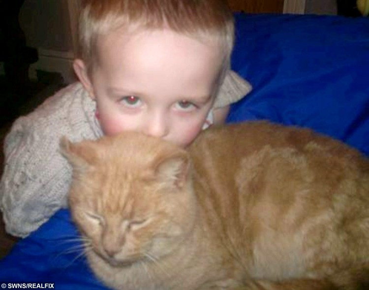 Collect picture of Ronnie with Phoenix just before Phoenix went missing.   See NTI story NTCAT.  This is the heart-melting moment a five-year-old boy bursts into tears of joy when he spots his long-lost cat in a rescue centre - 18 months after it went missing. Michelle Humber and her son Ronnie had gone to pick out a replacement pet when they stumbled across their old cat Phoenix who vanished from their home in May last year.  In an incredible coincidence, ten-year-old Phoenix was in an enclosure next to a cat called Orlando who they had arranged to collect from their local Cats Protection charity.  The family now plan to give both cats a home when they pick them up this weekend.