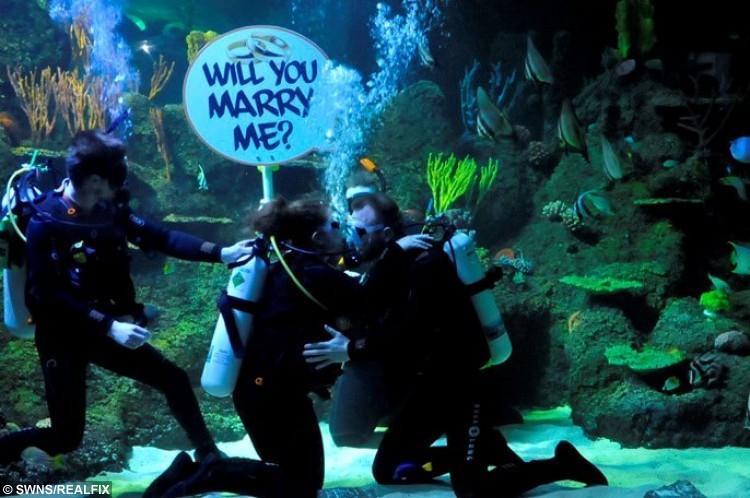 Underwater wedding proposal