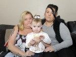Family fined for allowing toddler to feed squirrel some cake!