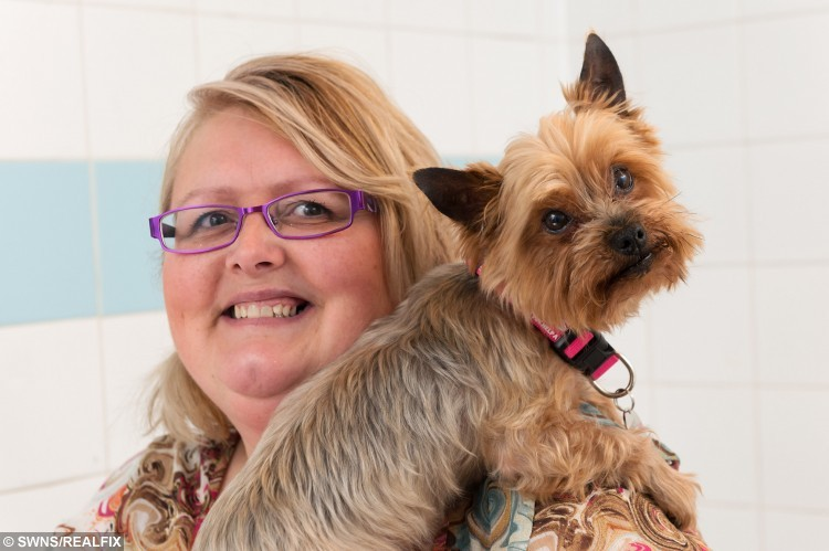 Cooper the Yorkshire Terrier with owner Lynn Redpath at Edinburgh PDSA PetAid Hospital. See SWNS story SWBAND; A tiny Yorkshire terrier lucky to be alive after eating - 22 HAIR BOBBLES. Adorable Cooper the Yorkie had to undergo emergency surgery after it was discovered he has a love for gulping down the hair accessories. He was rushed to a pet hospital by his owner Lynn Redpath who became worried when he started being sick. X-rays revealed a large mass in his stomach that was the 22 hair bobbles and a button which were blocking the entrance to his intestines and could have proved fatal.
