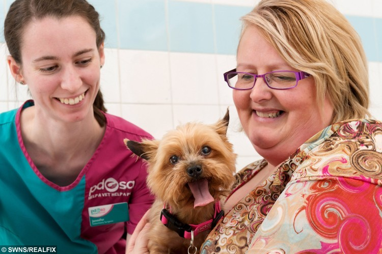 Cooper the Yorkshire Terrier with owner Lynn Redpath and Jennifer Lee (Veterinary Surgeon, left) at Edinburgh PDSA PetAid Hospital. See SWNS story SWBAND; A tiny Yorkshire terrier lucky to be alive after eating - 22 HAIR BOBBLES. Adorable Cooper the Yorkie had to undergo emergency surgery after it was discovered he has a love for gulping down the hair accessories. He was rushed to a pet hospital by his owner Lynn Redpath who became worried when he started being sick. X-rays revealed a large mass in his stomach that was the 22 hair bobbles and a button which were blocking the entrance to his intestines and could have proved fatal.