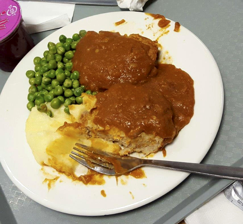Would you want to eat THIS while recovering in hospital?