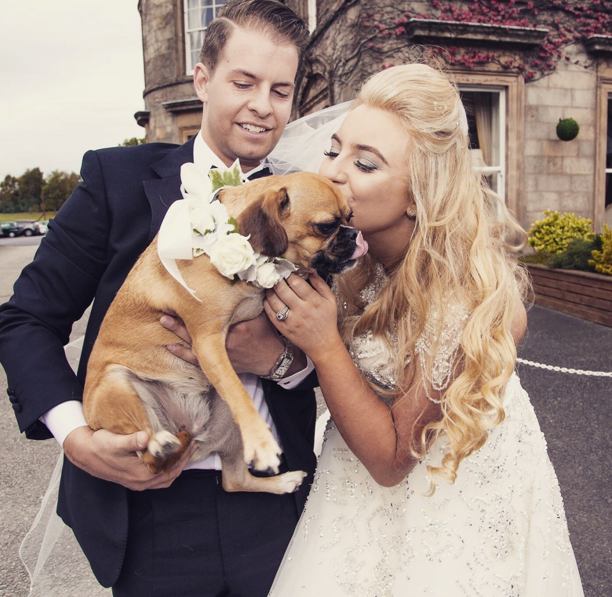 Pampered pooch takes pride of place at owner's wedding as their flower girl!