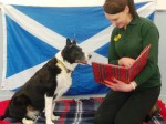 Scottish rescue dog is being read classic Burns poetry to boost her confidence