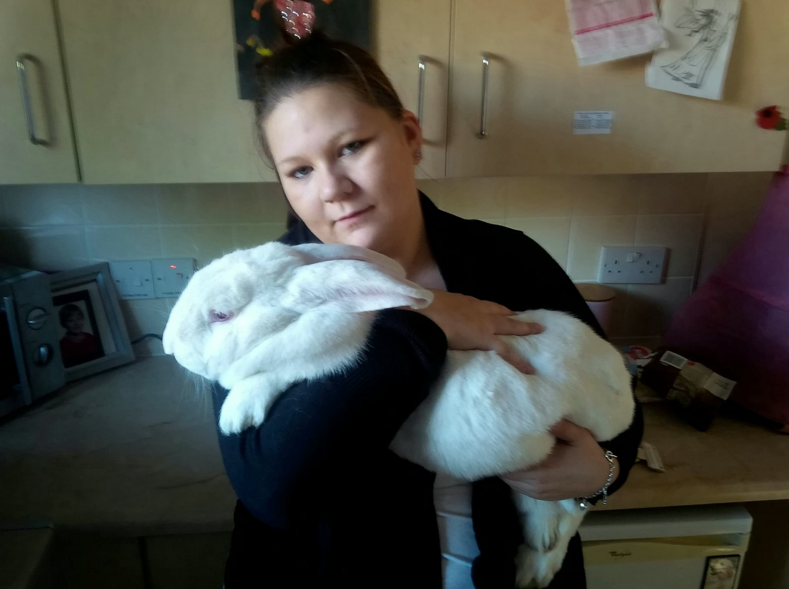 Horror as thugs slaughter giant pet rabbit and chop off his ears