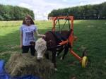 Disabled Duke risks losing loving family who spent £10k nursing him back to health