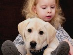 Family's appeal to train their puppy to support autistic three-year-old
