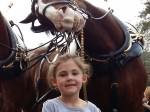 Five-year-old is photobombed by a laughing horse!