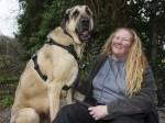 Big Friendly Hound – meet the dog that can eat an entire cow leg