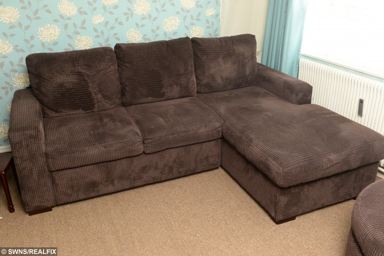 Jan's sofa from SCS