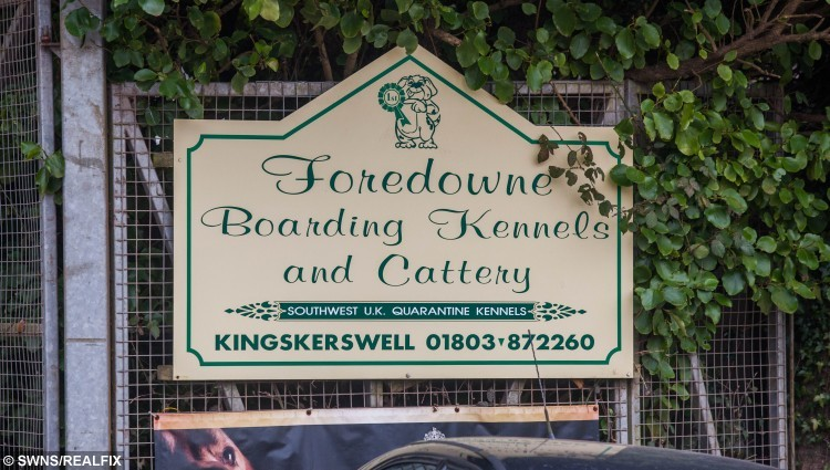 GV of Foredowne Boarding Kennels in Kingskerwell, Devon where whistle blower Laura Khanlarian previously worked  as she highlighted the treatment of Stella the dog. February 29 2016 See SWNS story SWDOG;  Police kept a dog in a 1m (3ft) by 3m (9ft) cage for two years without ever exercising it. Stella was seized after her owner was arrested on an unrelated matter in Devon in 2014. Devon and Cornwall Police refused to give specific reasons why the dog could not be exercised. They said she was considered potentially dangerous. A worker at the kennels said they were told by police not to exercise dogs held under the Dangerous Dogs Act.