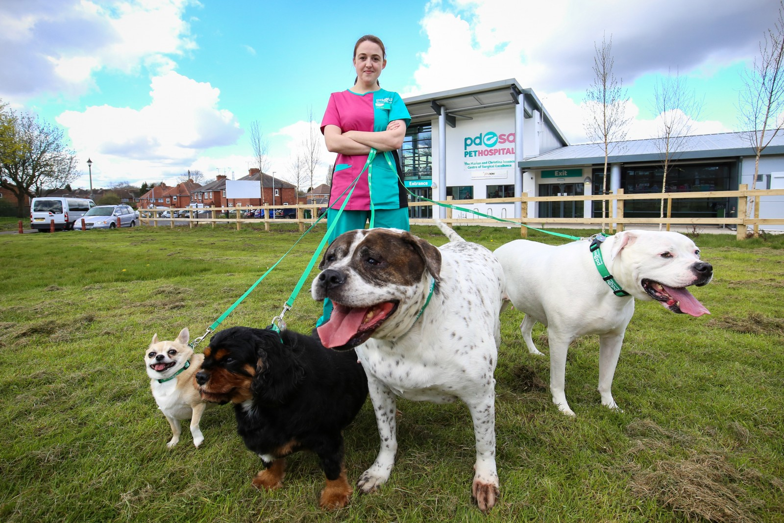Meet 13 of Britain's FATTEST PETS who are heading to their very own SLIMMING CLUB…