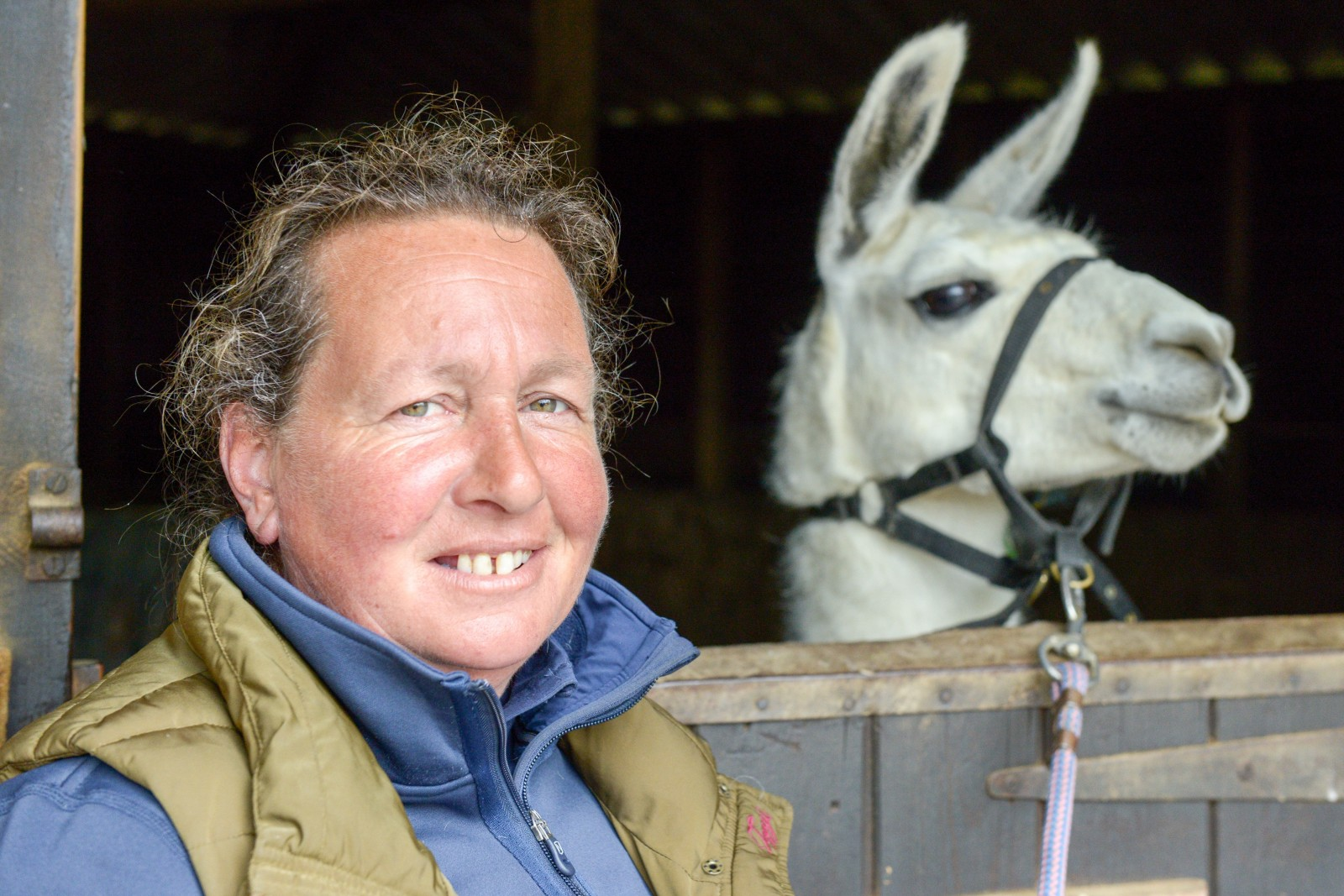 A woman was hailed a hero for saving her friend by rugby-tackling a garden intruder – a LLAMA.