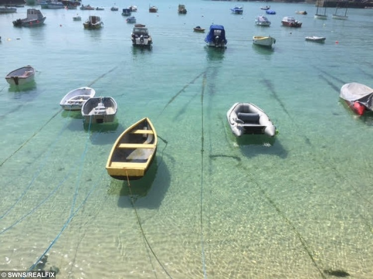 St Ives, Cornwall, where David Harries lost his ring on a family holiday.