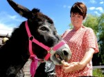 Lucky donkey saved from slaughterhouse is nursed back to health with jam sandwiches