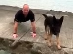 Super cute video of police dog handler and pooch doing press ups for charity challenge
