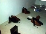 Video: Rat in shoe shop climbing into shoe