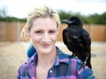 Woman who rescued baby crow says it watches TV with her, comes when called and is learning to talk