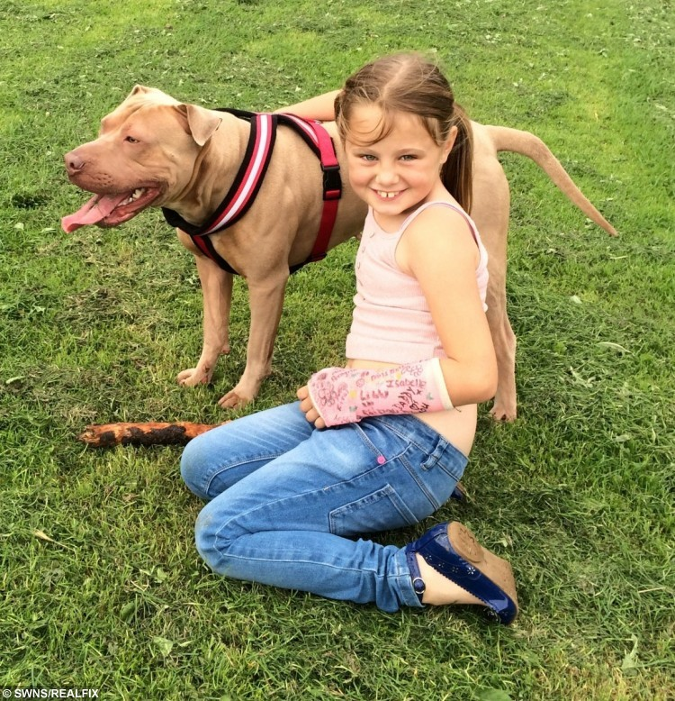 This is the heartwarming moment a little autistic girl is reunited with her beloved dog