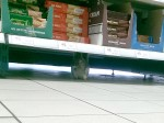Cheeky squirrel caught munching on celery inside Tesco