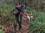 """Fox Killed After Pack Of Hounds Brutally Mauled It To Death During 'Illegal Hunt"""""""